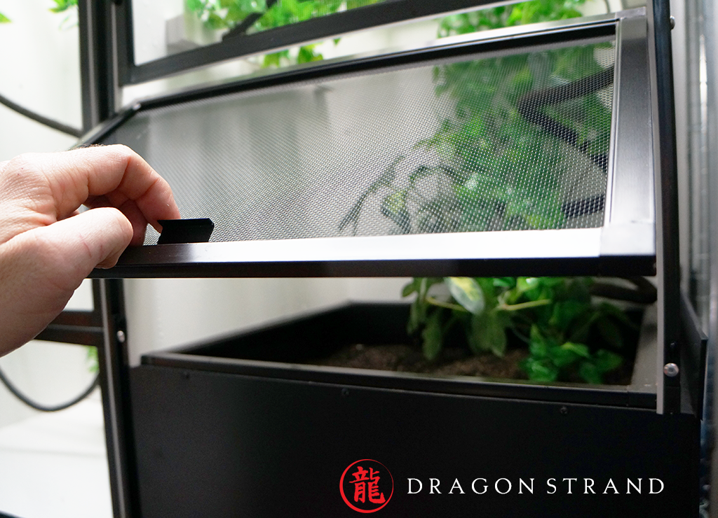 Easy Access to Chameleon Cage Egg Laying Box