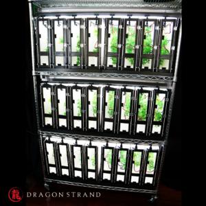 Chameleon cage rack for babies