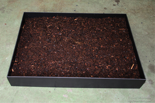 substrate for leaf tailed gecko (uroplatus) cage