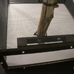 Dragon Ledge installed on chameleon screen cage