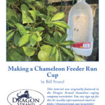 How to Make a Chameleon Feeder Run Cup