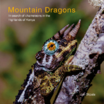 Mountain Dragons Inside cover page